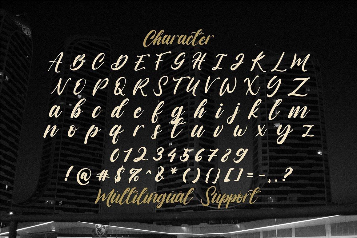 Vagnotie-Modern-Script-Font-3