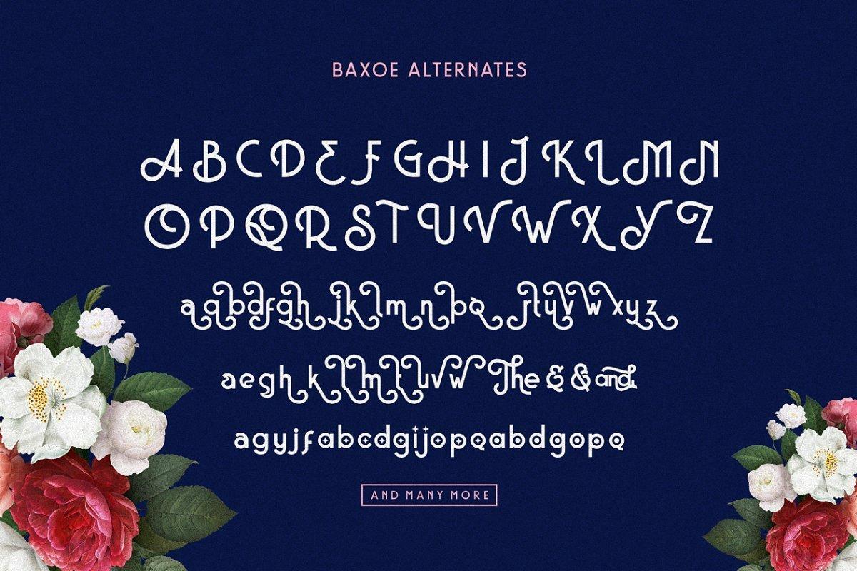 Baxoe-Sans-Fancy-Typeface-4