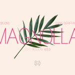 Magnolla Family Font