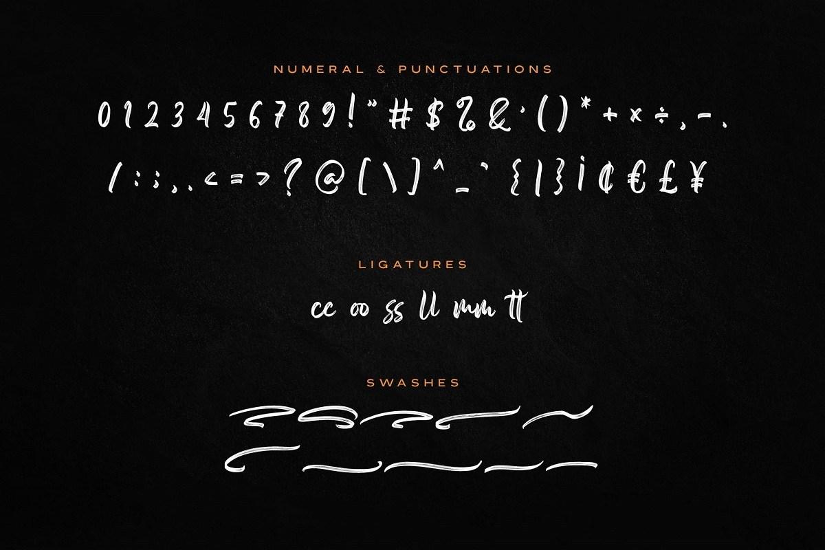 Someone-Handbrush-Script-Font-4 (1)