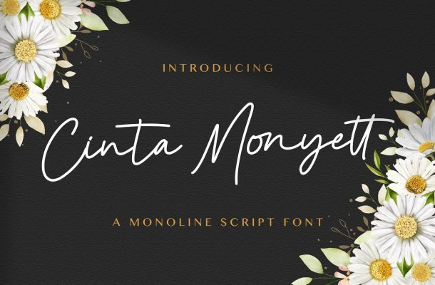 Cinta Monyett Font