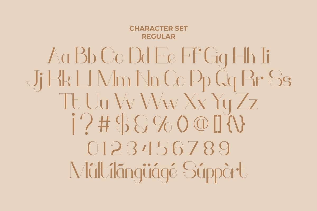 Monodic Serif Font-3