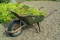 Image Ref: 12-04-15 - Wheel Barrow, Viewed 11279 times