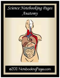 Free Anatomy Notebooking Pages (Limited Time!)