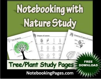 homeschool notebookings pages