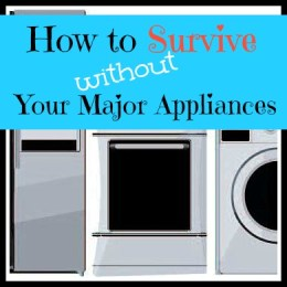 How to Survive Without Your Major Appliances. Really.