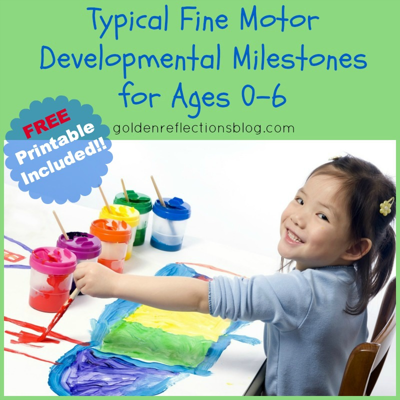 Free printable typical fine motor developmental for Motor age coupon code