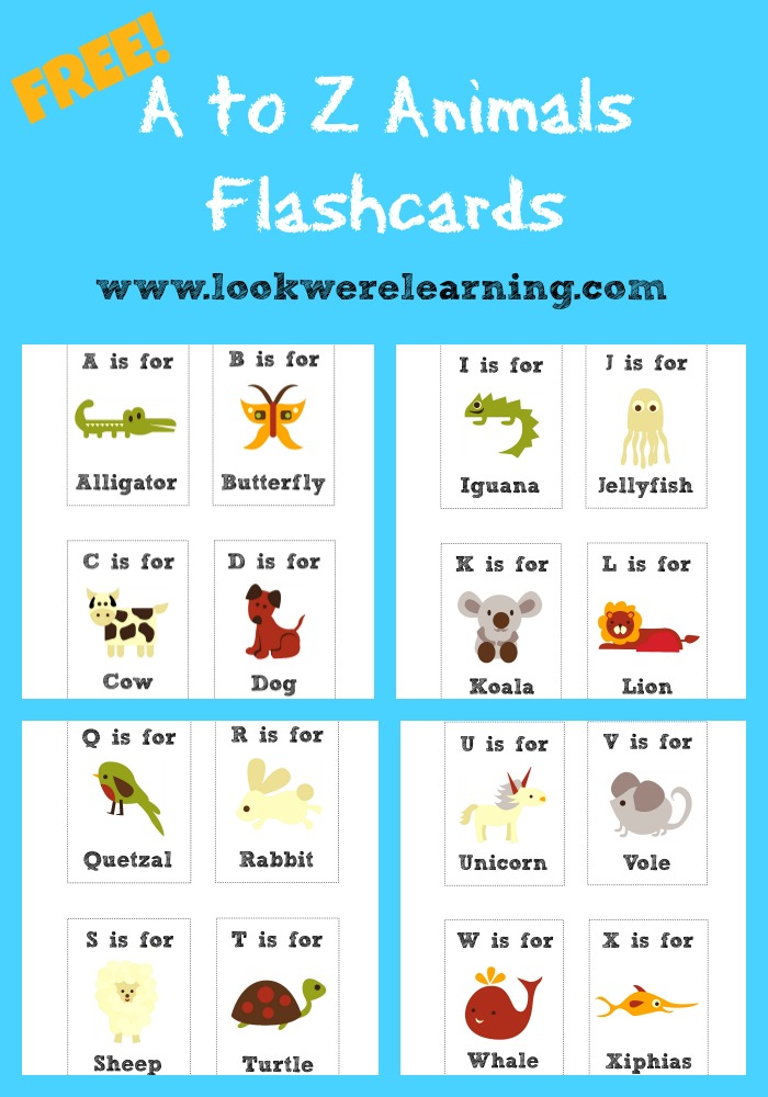 in this free printable flashcards pack from look were learning youll find a card for every letter of the alphabet each one featuring a different real