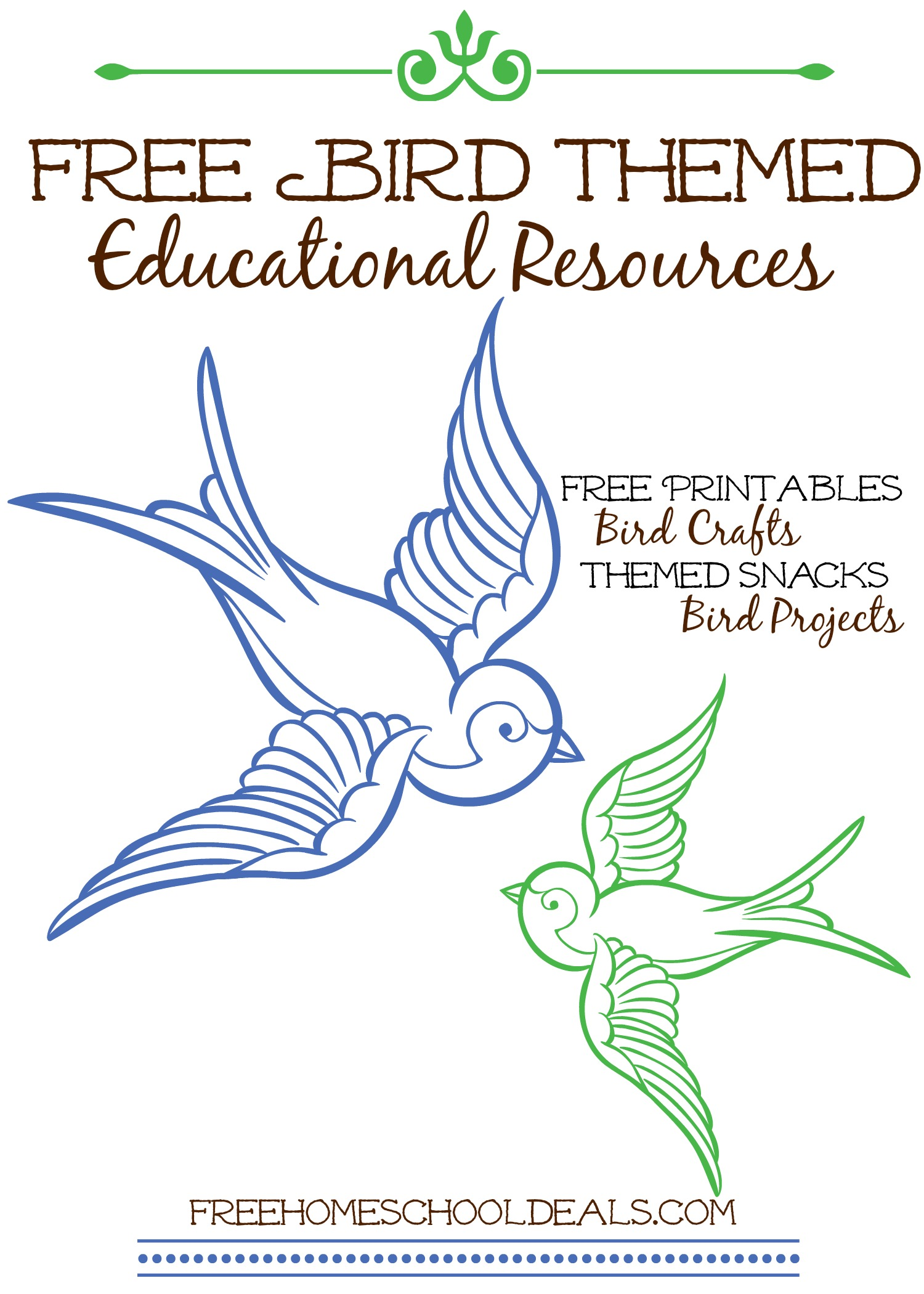 Free Bird Themed Educational Resources