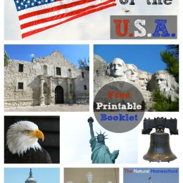 FREE USA Printables Set