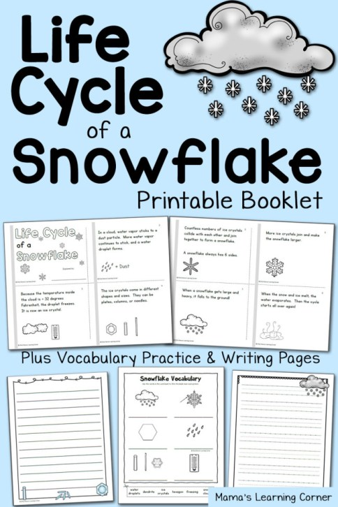 FREE Life Cycle of a Snowflake Pack