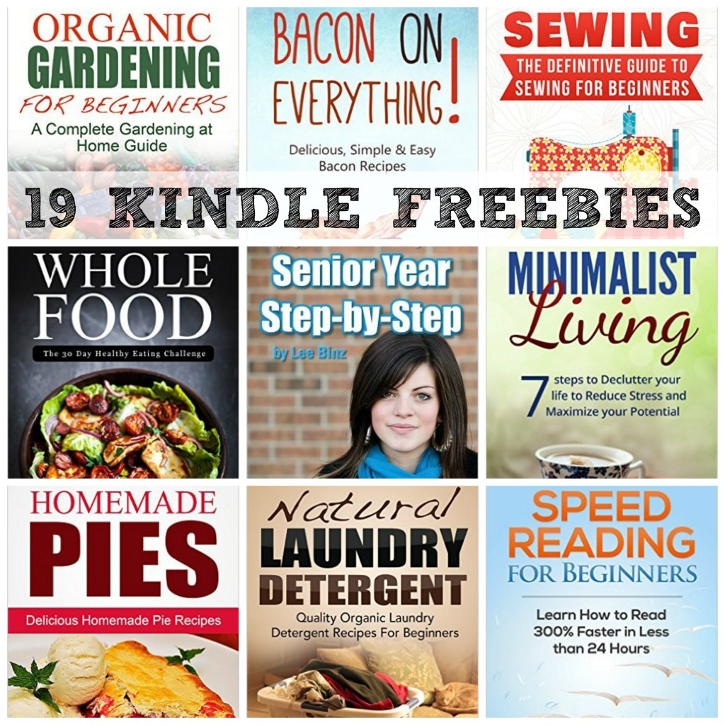 19 kindle freebies homeschool senior year step by step  the definitive guide to sewing for Christian LEGO Curriculum LEGO History