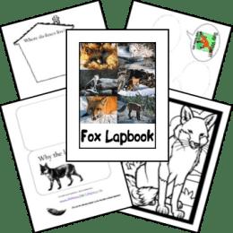FREE Fox Lapbook