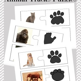 FREE ANIMAL TRACKS PUZZLES (Instant Download!)