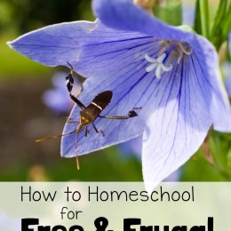 How to Homeschool for Free and Frugal: Nature Study Resource List