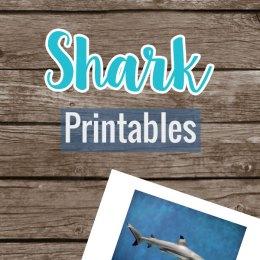 FREE Shark Printables Set