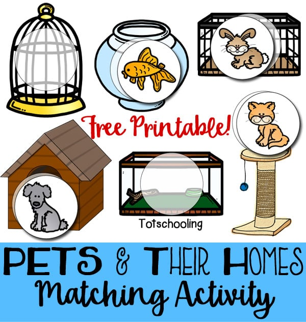 FREE Pets and Their Homes Matching Activity