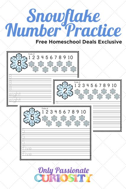 FREE SNOWFLAKE NUMBER PRACTICE PRINTABLES (Instant Download)