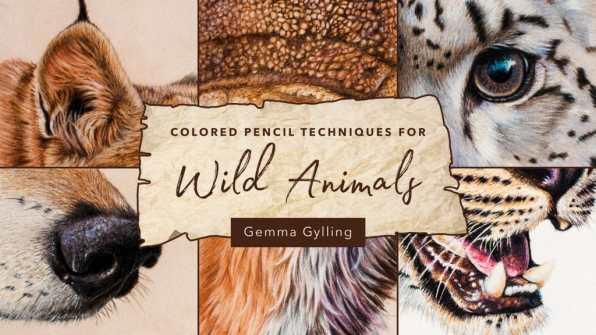 Colored Pencil Techniques for Wild Animals