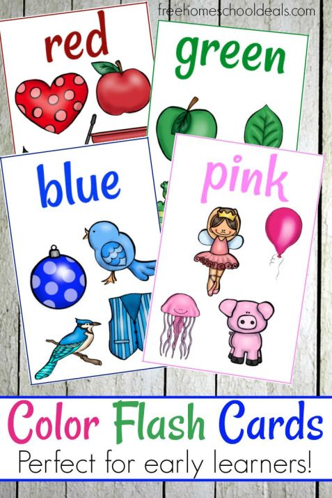 FREE COLOR FLASH CARDS (Instant Download)