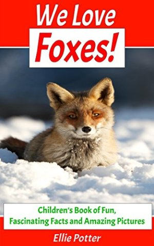We Love Foxes!