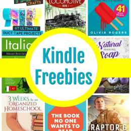 14 Kindle Freebies: Duct Tape Crafts, 3 Weeks to An Organized Homeschool, & More!