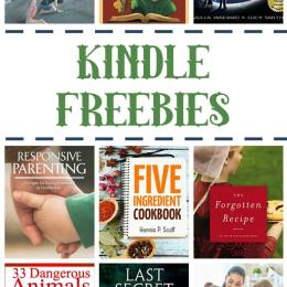 16 Kindle Freebies: The Dragon Grammar Book, Responsive Parenting, & More!