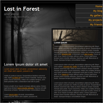 lost_in_forest_10_template_1044