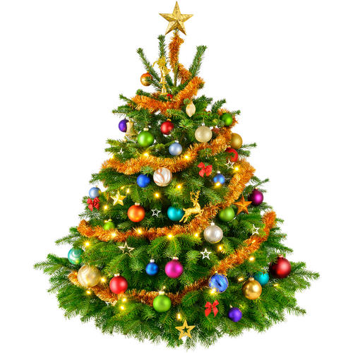 Christmas Tree Transparent Transparent PNG Pictures Free