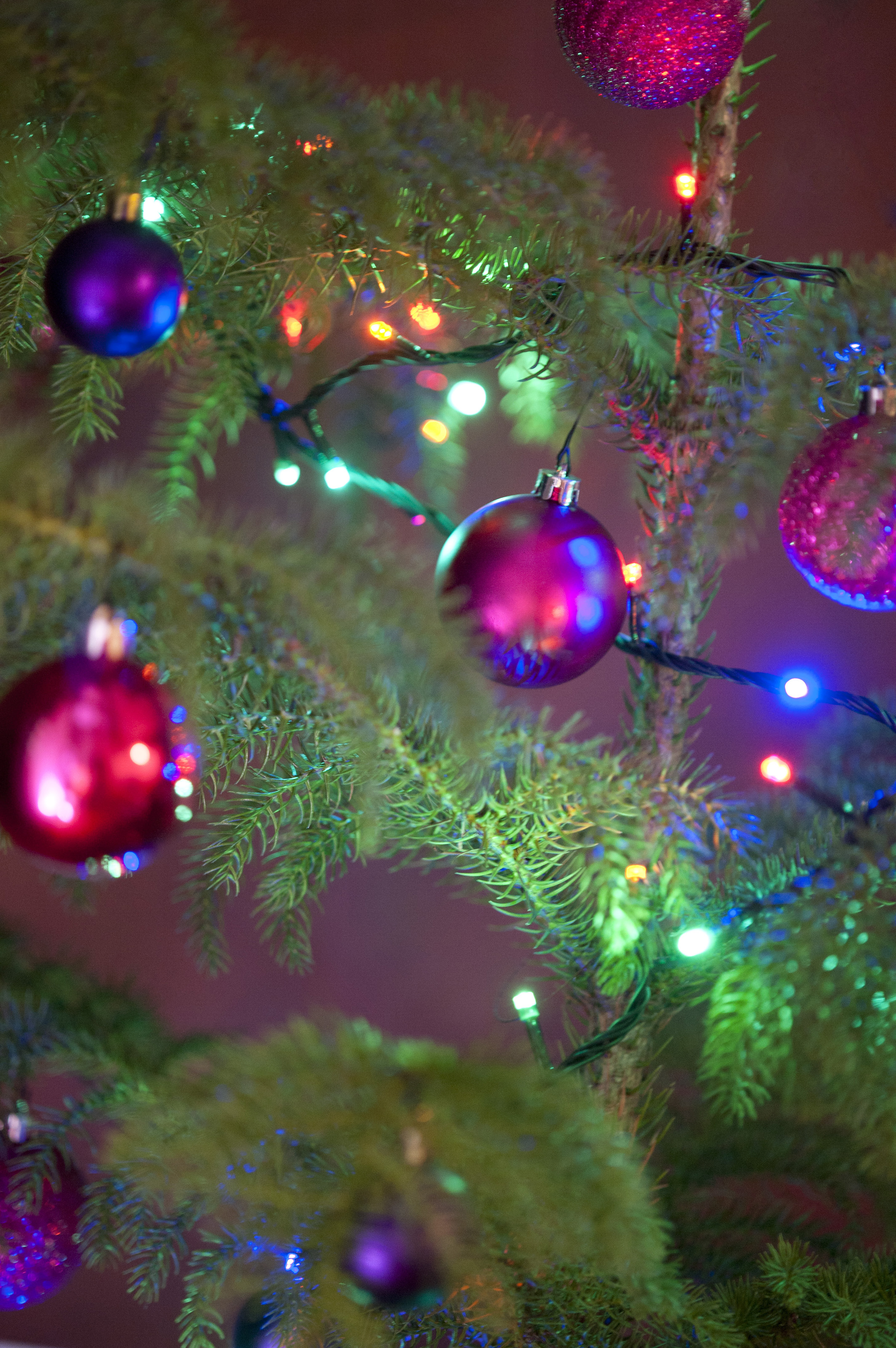 Tree Christmas Lights