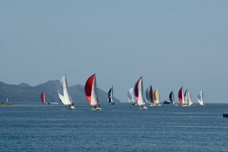Free Stock Photo: a flotilla of yachts heading on out in a racing regatta