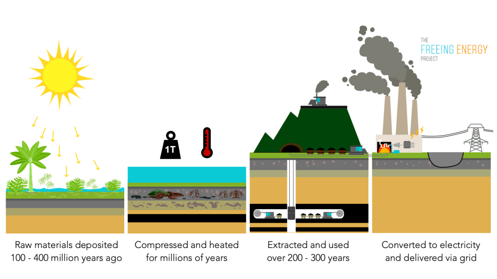 The lifecycle of coal, from sunlight to electricity
