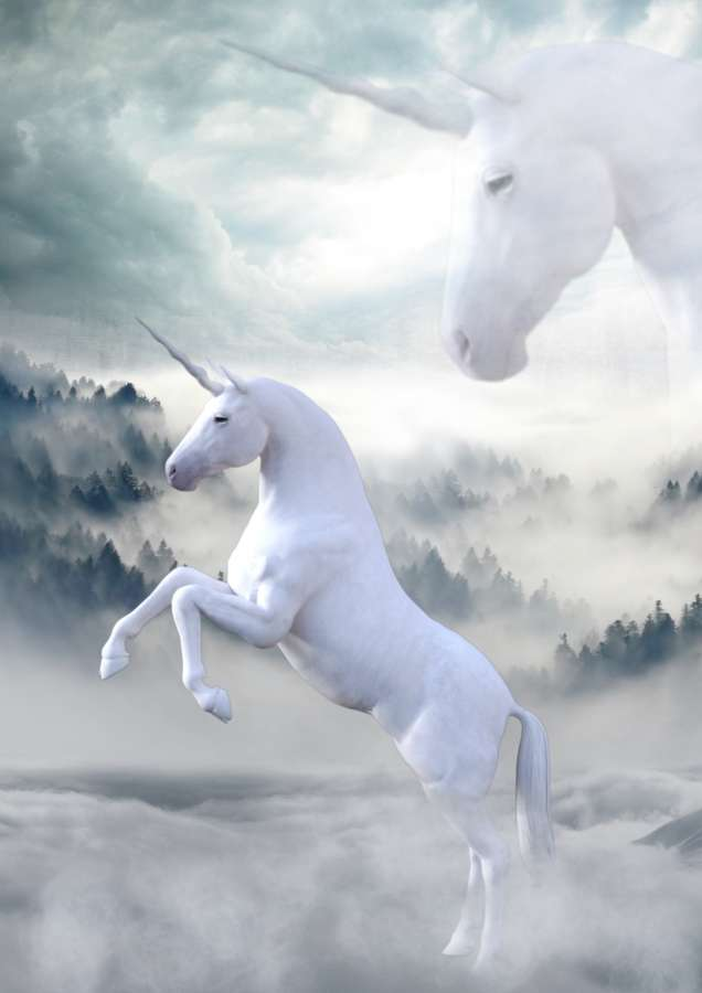 Estos dibujos para pintar están preparados y listos para imprimir. 🥇 Imagen de Unicornios reales - 【FOTO GRATIS】 100011197