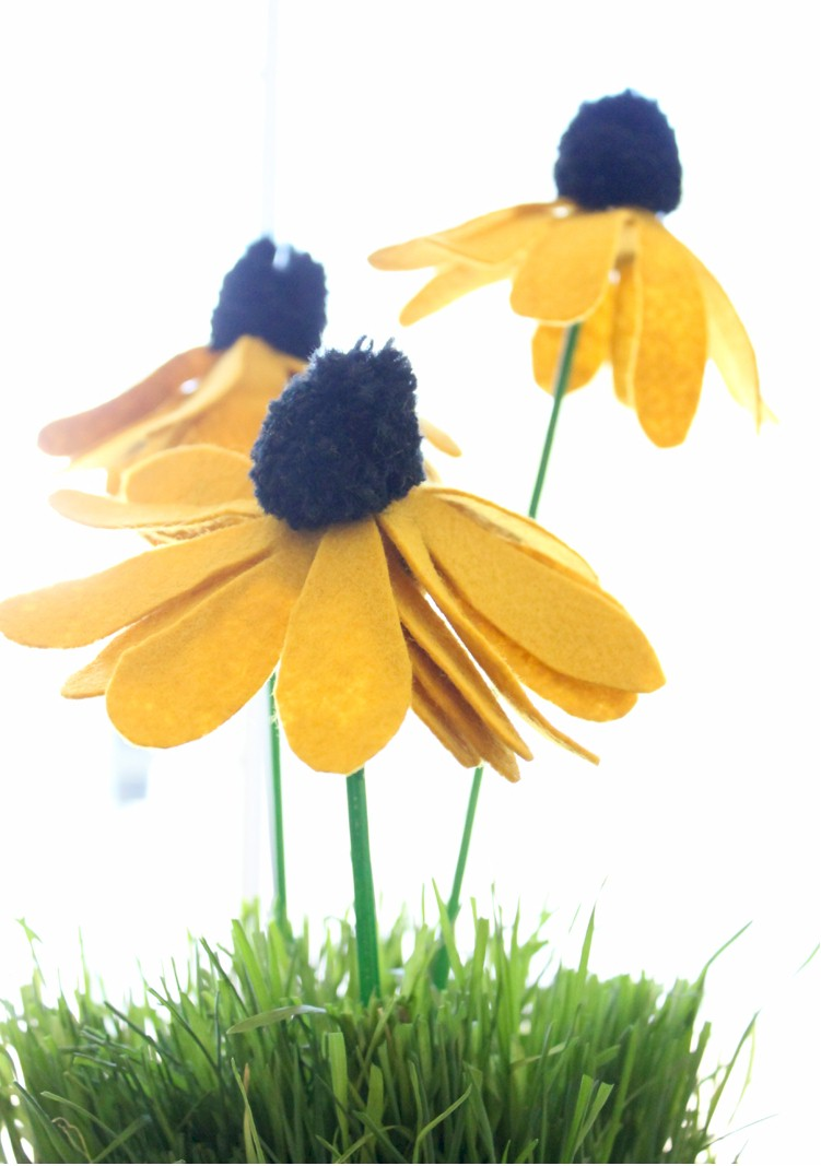 Image of Make Black Eyed Susans