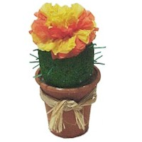 Image of Cactus Flower Favor