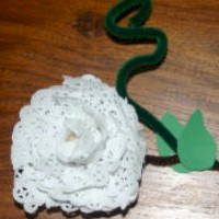 Image of Doily Rose