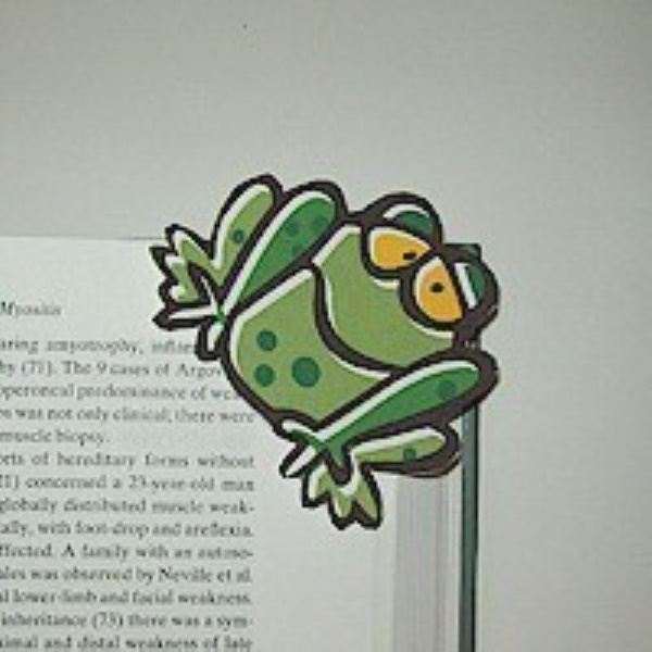 Frog Bookmark From Recycled Envelopes