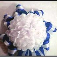 Image of How to Make a Homecoming Mum