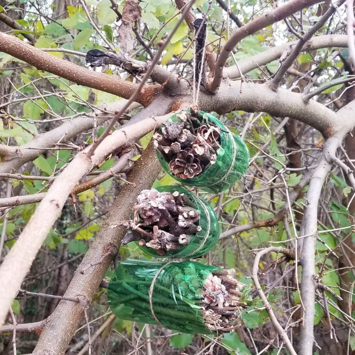 Easy Insect Hotel for Children to Make