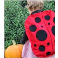 Image of Ladybug Halloween Costume