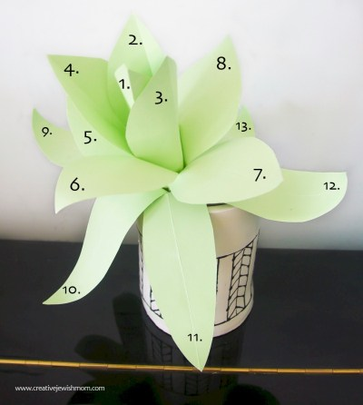 Image of Paper Agave Plant