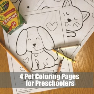 Image of Pet Crafts and Activities (Roundup)