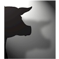 Pig Shadow Puppet