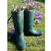 Planting Wellies