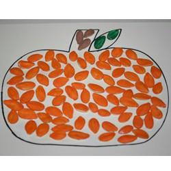 Pumpkin Seed Pumpkin