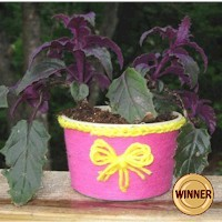 Butter Tub Planter