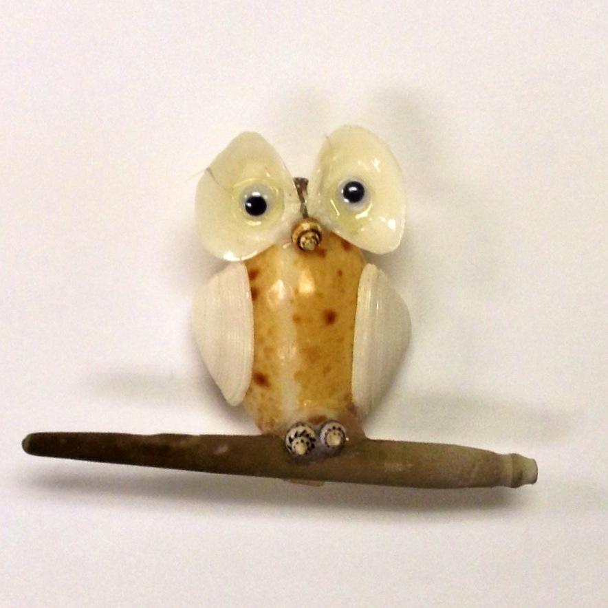 Image of Sea Shell Owl