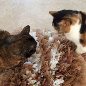 Image of Pet Snuffle Mat