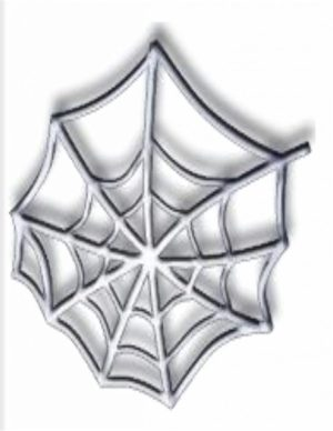 Image of DIY Spiderweb Tee Shirt