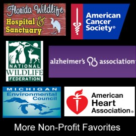 More Non-Profit Favorites